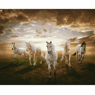 DIY Acrylic Paint By Number Kit Horses Oil Painting On Canvas Home Wall Decor