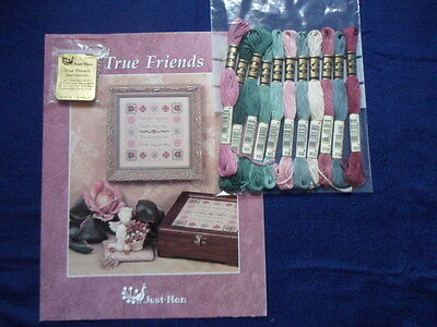 Just Nan True Friends sampler embroidery and DMC threads