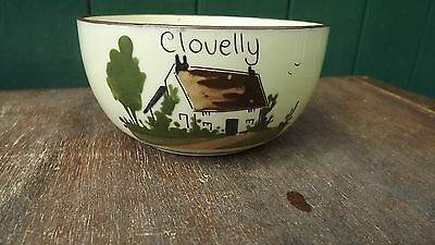 "Old Clovelly MottoWare Babbacombe Torquay Cottage Bowl ""Prevention is better.."""