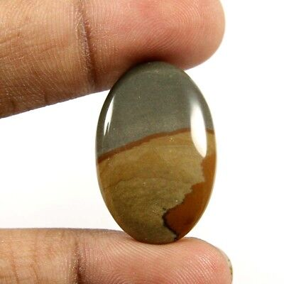 19.80ct Marvelous Quality Natural Wild Horse Jasper Cabochon Oval Loose Gemstone