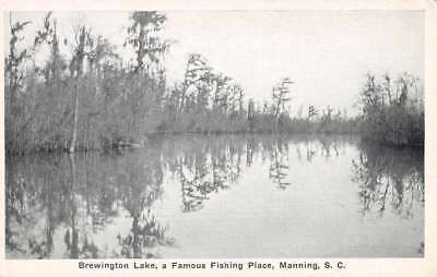 Manning South Carolina Brewington Lake Waterfront Antique Postcard K73531