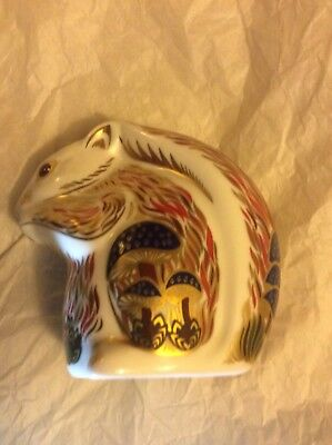 Royal Crown Derby Stony Middleton Squirrel Paperweight Ltd Sinclair
