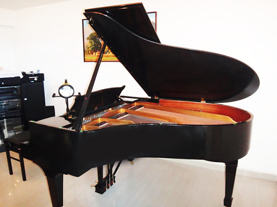 Hamburg Steinway & Sons  Model O  Grand Piano  free  worldwide deliver!