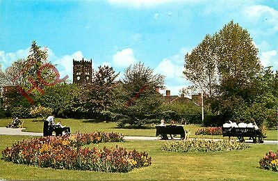 Picture Postcard- Heanor, The Park