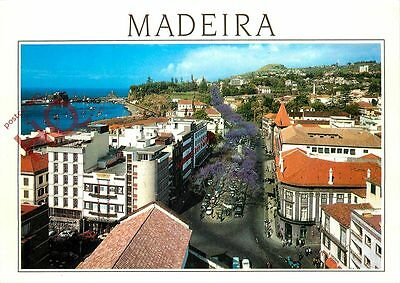 Picture Postcard- Madeira, Funchal, Partial View