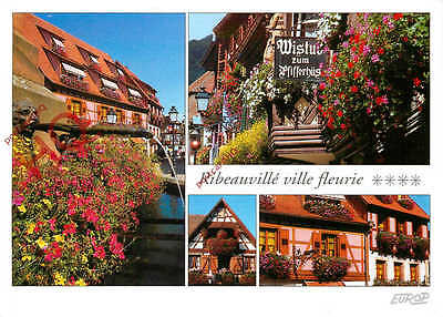 Picture Postcard- Ribeauville (Multiview)