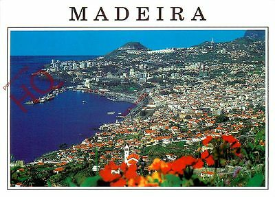 Picture Postcard; Madeira, Funchal, Western View