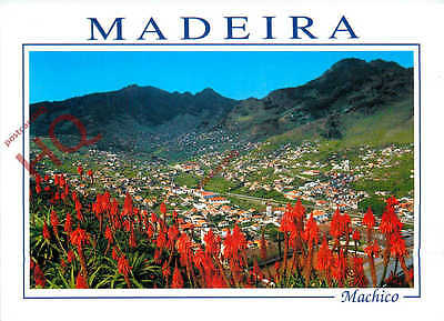 Picture Postcard:;Madeira, Machico