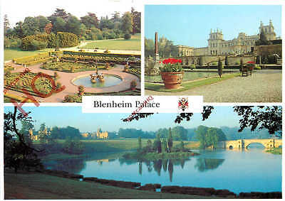 Picture Postcard~ Blenheim Palace (Multiview)