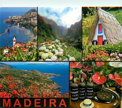 Picture Postcard~ Madeira (Multiview)