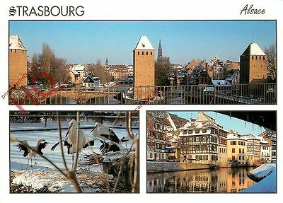 Picture Postcard~ Strasbourg (Multiview)