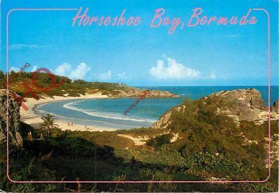 Picture Postcard::Bermuda, Horseshoe Bay