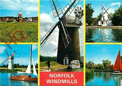 Picture Postcard-:Norfolk Windmills (Multiview)
