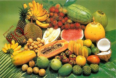 Picture Postcard, Malaysian Fruits