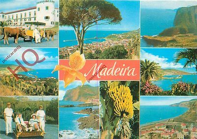 Picture Postcard::Madeira (Multiview)