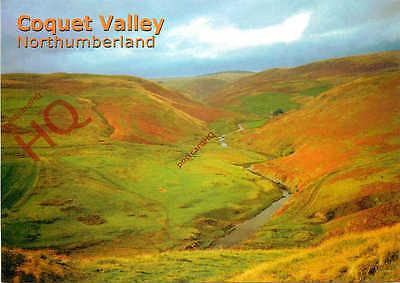 Picture Postcard: Northumberland, Coquet Valley
