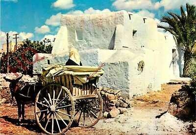 Picture Postcard:;Ibiza, Typical House And Cart