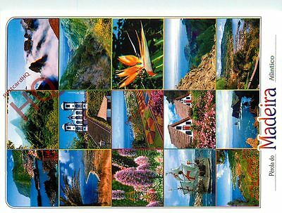 Picture Postcard-:Madeira (Multiview)