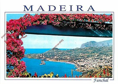 Picture Postcard:-Madeira, Funchal, Western View