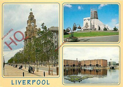 Picture Postcard--Liverpool (Multiview)