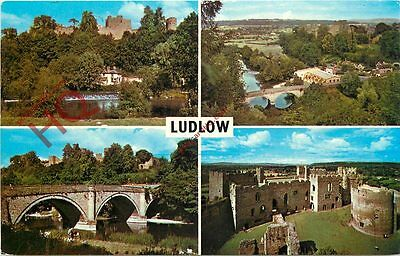 Picture Postcard--Ludlow (Multiview)