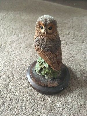 Country Artist Owl