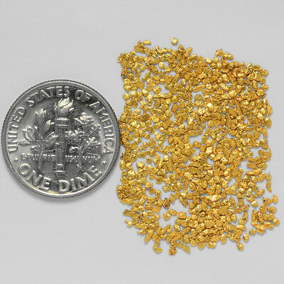 0.6769 Gram Alaskan Natural Gold Nuggets - (#21068) - Hand-Picked Quality