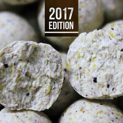 -- Deep Water Baits Boilies -- Active Feed Line -- Fruit Bomb 10 Kg --
