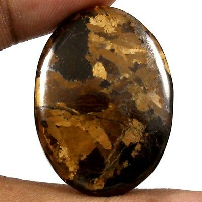 45.45cts Natural Awsome Quality Peter Jade Bronzite Gemstone Oval Loose Cabochon