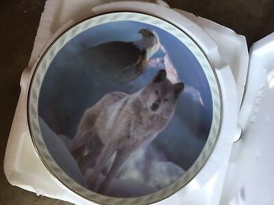 Bradford Exchange Masters Of The Land And Sky United In Spirit Collectible plate