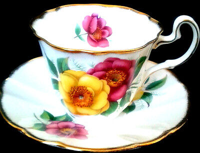 Adderley Pink Yellow Wild Rose Teacup & Saucer Brushed Gold 1940s Tea Cup Set