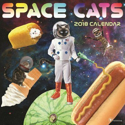 Space Cats - 2018 Wall Calendar - Brand New - Humor Funny 752790