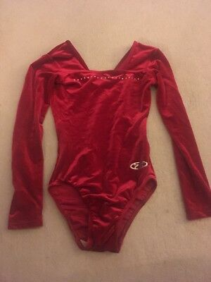 Girl's The Zone Wine Coloured Leotard Size 30 Inch