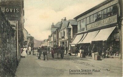 Flintshire Chester Street Mold Perfection Series