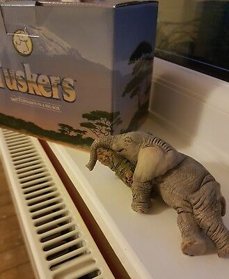 Tuskers Elephant All Worn Out