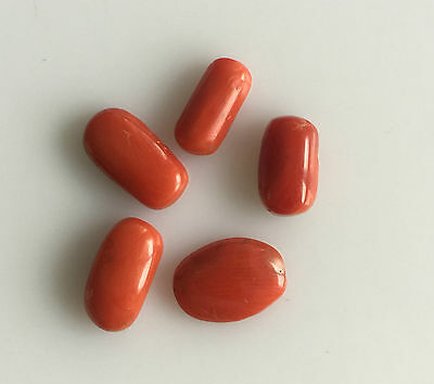 13.57 Ct 5Pc Natural Red Coral Cabochons Loose Gemstones Free Size Wholesale Lot