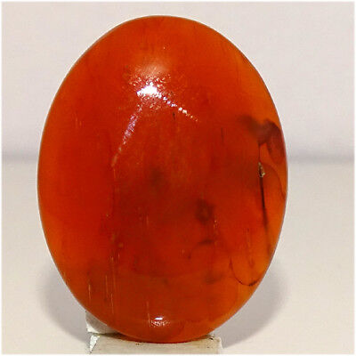 FREE SHIPPING 100% NATURAL CARNELIAN CABOCHON 29X23X07MM GEMSTONES 32.50Cts.