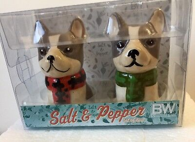 Boston Terrier Salt And Pepper With Scarf