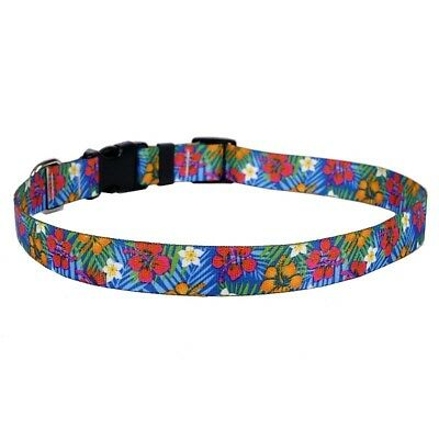 NEW Hibiscus Paradise Dog and Cat Collar, Leash or Keychain by Yellow Dog Design