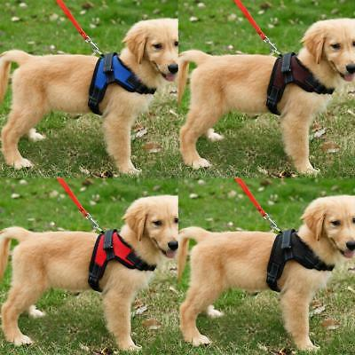 Adjustable Mesh Dog Harness Pulling Walking Strap Vest for Large Medium Dogs