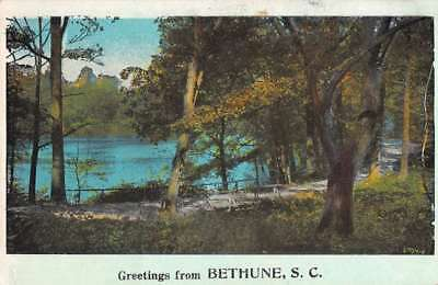 Bethune South Carolina Waterfront Roadway Greeting Antique Postcard K77033
