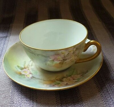 Delicate Wild Rose Demitasse Cup and Saucer Set with Gold Rim, Handle