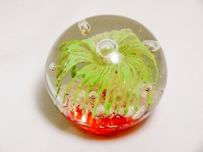 GLOW IN THE DARK Glass Paperweight Green Coral Scene