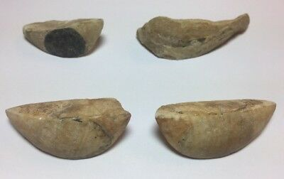Lot Of 4 Ancient Egyptian Stone Eyes Late Period c.662 BC.