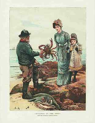 SEAFOOD * CRABS AND LOBSTERS * Wonderful Antique Lithograph MADE IN 1882 (orig.)