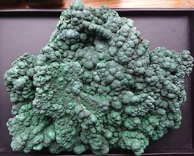Malachite 4280 grammes - Natural Free Form Malachite