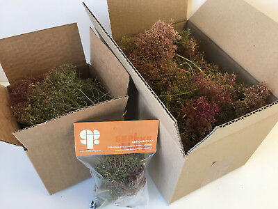 S-P Seafoam Trees -Model Scenery Railway Forest Wargames Foliage Sea Foam OO N O