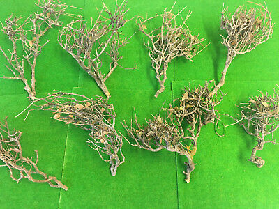 S-P Natural Tree Frames -Model Scenery Dried Wood Branch Railway Wargame Terrain