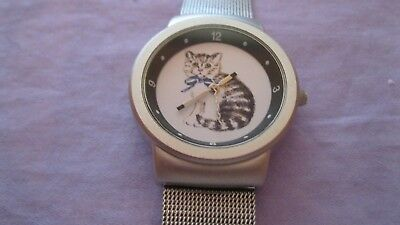 Kitty cat meowing watch