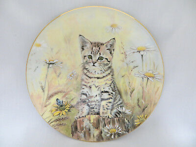 Tiger's Fancy Tabby Kitten Classics Collector Plate Royal Worcester Crown Ware